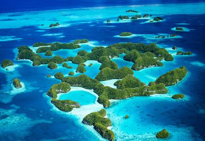 Croisière plongée à Palau