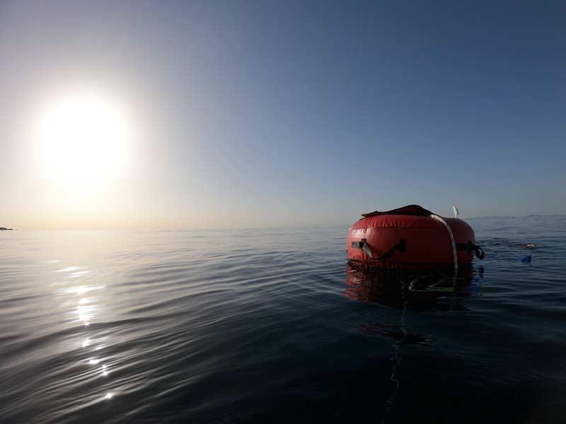 Iles Canaires - Stage apnée à Lanzarote avec Aquasport Diving