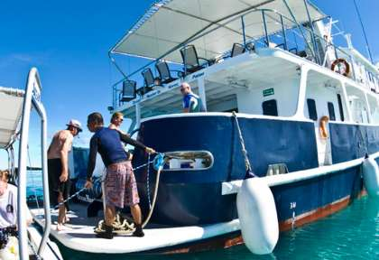 Palau © Ocean Hunter 3 - Fish'n Fins