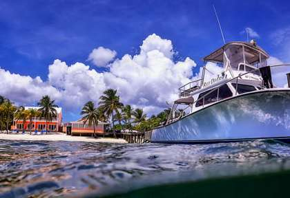 Little Cayman - Reef Divers