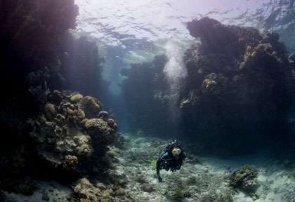 St Johns Reef